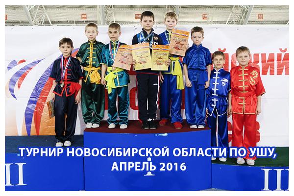 турнир Новосибирской области по УШУ